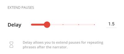 Camino delay settings screenshot.